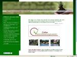 www.verschönerungsverein-calbe.de